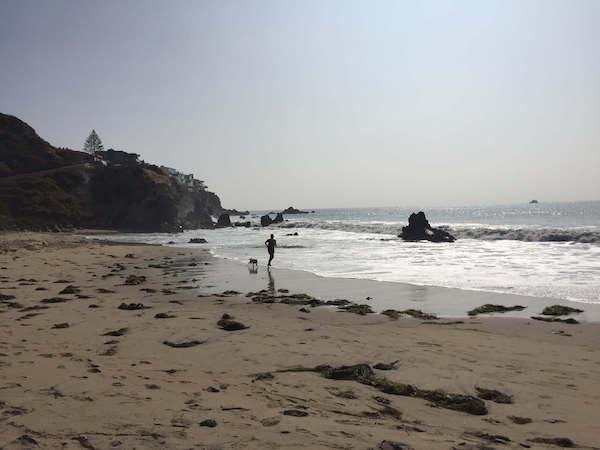 NJ Laguna Beach 01